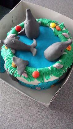 Dolfijnentaart.