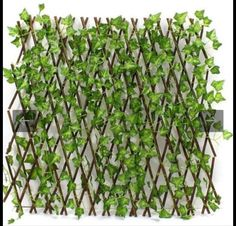 Privacy Fence Screen, Garden Screening, Interlocking Patio Tiles, Trellis Gate, Wood Deck Tiles, Ivy Wall, Exterior Signage, Artificial Boxwood, Outdoor Tiles