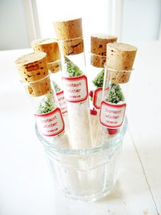 For the ones dreaming of a white Christmas: instant winter scene with miniature green bottlebrush trees and snow in a test tube. $12.00.