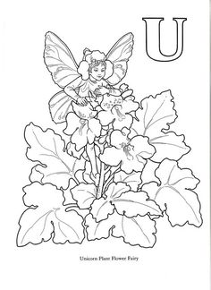 Flower And Fairy Alphabert By Darcy May