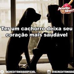 DEIXA TUDO MAIS SAUDÁVEL! <3 <3 <3 #petmeupet #filhode4patas #maedepet #maedecachorro #paidecachorro #cachorro #amocachorro #amoanimais