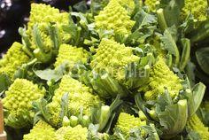 Broccoli romaneschi © morgan capasso