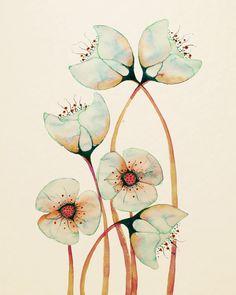 Imaginé Botanicals 12  x 16  par Buttermoths sur Etsy