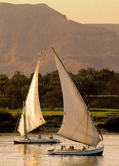 Feluccas on the Nile River in Aswan, Egypt - not my photo, but have totally been there.