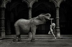 La Young Gallery de Bruxelles vient d'annoncer le décès accidentel du photographe anversois Marc Lagrange. Dès les années quatre-vingts, décennie où il se consacre définitivement à la photographie, Marc Lagrange crée des portraits et des nus intrigants de ses muses, femmes fatales insaisissables, pétries de secrets et de fantasmes, avec une tendance sous-jacente à la décadence.