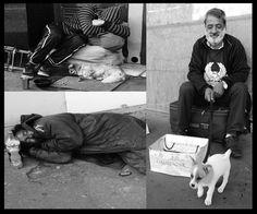 Fotografías  de  Paris