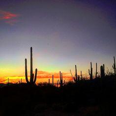 Sunset - Tucson, Arizona (Photo via Instagram by@remingtonandme)