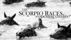 the scorpio races│opening credits Ya Books, Good Books, Amazing Books, The Scorpio Races, Walk In The Light, Maggie Stiefvater, Opening Credits, Book Tv, Book Fandoms