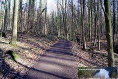 Strecke Bonn-Oberkassel - Kloster Heisterbach 02.02.2014