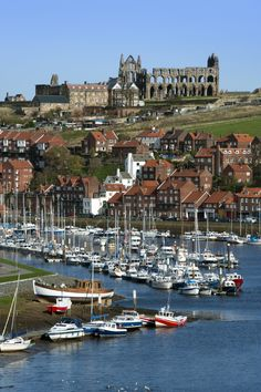 Whitby in North Yorkshire, is a little seaside town in the north of England. In the background, the ruins of St. Hilda's Abbey on the East Cliff looms over the town. Also on the East Cliff, is a churchyard which was the inspiration for Bram Stoker to write Dracula. Captain Cook was also local and sailed from the port at Whitby for his famous trip circumnavigating the globe.