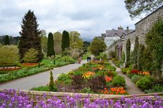 Exploring North Wales: Spring at Bodnant Gardens