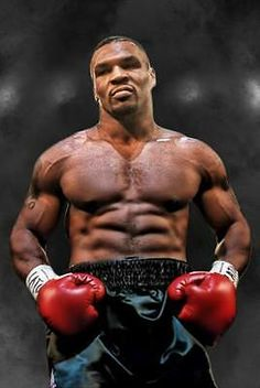 Mike Tyson Workout, Mike Tyson Training, Mike Tyson Boxing, Boxing Posters, Boxing Quotes, Boxing Gym, Boxing Training, Mike Tyson Quotes, Mcgregor Wallpapers