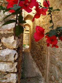 VISIT GREECE| Bougainvilles in Armolia, a medieval village on #Chios island. #Greece #islands