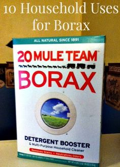 10 Household Uses for Borax (my favorite is #1!)