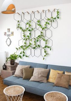 a cool hexagon trellis with climbing plants brings a refreshing feel to the space