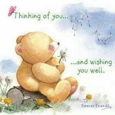 Thinking Of You and Wishing You Well ♡ Forever Friends tjn Thinking Of You Quotes, Thinking Of You Today, Teddy Bear Quotes, Hello Quotes, Praying For Others, Hug Quotes, Teddy Bear Pictures, Bear Pics, Get Well Wishes