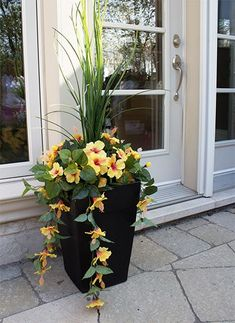 One way to beautify the entrance of your home is to place some flower pots close to the door. Here are several front door flower pots to inspire . Container Flowers, Flower Planters, Container Plants, Container Gardening, Flower Pots, Diy Flower, Flower Ideas, Outdoor Flowers, Outdoor Planters