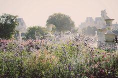 Jardin des Tuileries -Paris