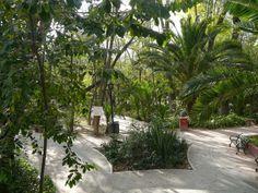 El Parque Benito Juárez se fundo en el siglo XX, es un lugar característico de estilo Francés en donde encontramos Moras, Chirimoyos y Nogales; vegetación característica de San Miguel de Allende.