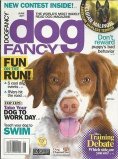 Dog Fancy magazine