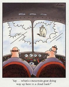 #Farside #cartoon #flying #pilothumor