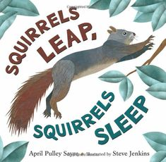 Squirrels Leap, Squirrels Sleep: April Pulley Sayre, Steve Jenkins: 9780805092516: Amazon.com: Books Counting Activities, Preschool Activities, Daily Activities, Fall Preschool, November Pictures, Steve Jenkins, Pulley, Nonfiction Books, Story Time