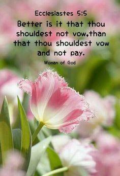Ecclesiastes 5:5 KJV