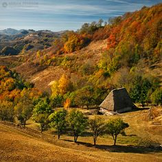 Autumn colors in Apuseni Mountains, Romania (by Adrian Petrisor) Beautiful Places To Visit, Beautiful World, Places To See, Visit Romania, Little Paris, Autumn Nature, Bucharest, Eastern Europe, Natural World