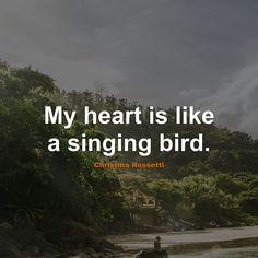 #Romantic #Quotes #Quote #RomanticQuotes #QuotesAboutRomantic #RomanticQuote #QuoteAboutRomantic #Heart #Bird