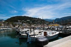 Tagesausflug Mallorca - 5 Ausflüge für die Insel - AI SEE THE WORLD