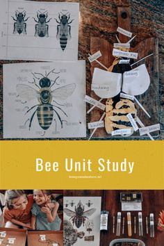 Bug Activities, Spring Activities, Infant Activities, Science Ideas, Science For Kids, Abc Preschool, Train Up A Child, Thematic Units, Unit Studies