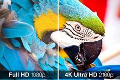 5 televizoare 4K ieftine, ce merită atenția ta .   Nici nu au trecut 3 ani de la lansarea televizoarelor 4K, și iată că deja prețurile lor au ajuns să fie pentru anumite modele foarte accesibi... https://www.gadget-review.ro/5-televizoare-4k-ieftine-ce-merita-atentia-ta/