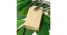 Aleppo soap has a reputation going back centuries Natural Cleaning Solutions, Natural Cleaning Products, Aleppo Soap, Sodium Hydroxide, Best Soap, Distilled Water, Soap Recipes, Soap Making, Olive Oil