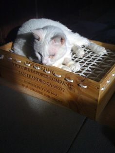 """cat """"hammock""""  ( made by me! ) out of a wine crate and rope... placed over the heating vent.... they stay warm and don't block all of the air flow! yay!"""