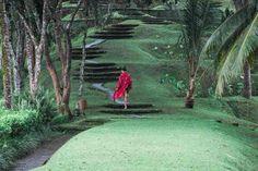 COMO Shambhala Estate's Ayurveda Retreat Takes Personalisation To The Next Level Tropical Paradise, The Next, Ayurveda, Lush, Bali, Spa, Plants, Planters, Plant