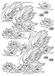 Designs for Coloring: Birds: Ruth Heller: 9780448031507: Amazon.com: Books