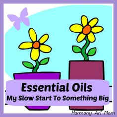 Essential Oils - my