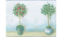 Light Blue Cream Apple Tree Pots KC78046 Wallpaper Border