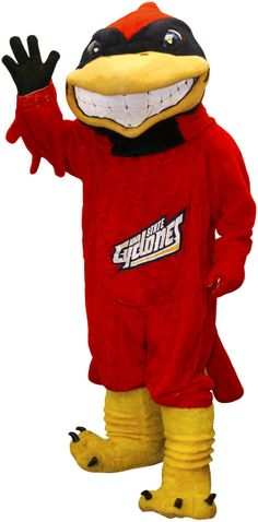 """Iowa State's Cy - Cy was born out of two decisions in the early 1950s; the first a consensus among Iowa State students --led by the pep council -- that you can't """"stuff a cyclone."""" In the search for an alternate mascot, they opted for a cardinal bird, based on the school colors. """"Cy"""" was submitted 17 times in a subsequent nationwide name contest and chosen as the cardinal's name."""
