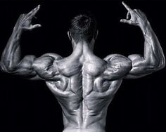 CUSTOMIZED Meal Plans & Workout Plans FOR $10... #fitness #motivation #bodybuilding