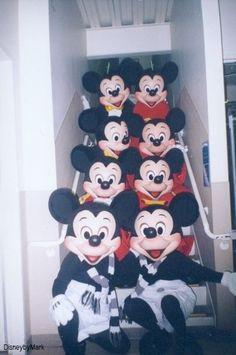 "backstagemagic: ""If there's only one Mickey, I must be REALLY drunk right now. I'm seeing octuple. Disney Magic, Disney Parks, Disney Pixar, Walt Disney, Disney Characters, Disneylândia Vintage, Vintage Disney, Disneyland World, Disney Cast Member"