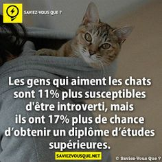 ah c tout a fait moi New Things To Learn, Things To Know, Did You Know, Cat People, Good Grades, Jokes Quotes, True Facts, True Stories, Quotations