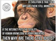 we as Monkeys realise how important the planet is! Idiots