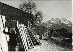 Una segheria a Terranova del Pollino. 1961.