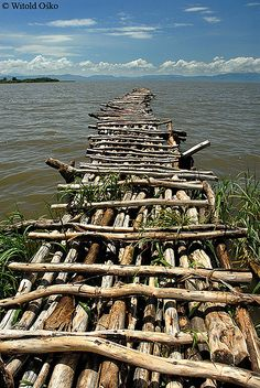 Chamo Lake, Ethiopia (2006).  Photo: witoldosko, via Flickr