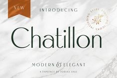Ad: Chatillon Font + Extras by Tobias Saul on Chatillon is an elegant sans serif font with a super exquisite appearance. Its clean shapes and remarkable details makes it perfect for Sans Serif Fonts, Typography Fonts, All Fonts, Typography Alphabet, Layout Template, Logo Templates, Logo Inspiration, Vintage Fonts, Vintage Lettering