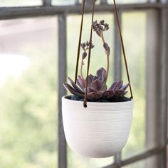 leather and porcelain hanging planter