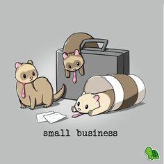 Small Business from TeeTurtle Cute Animal Drawings Kawaii, Kawaii Drawings, Wallpaper Kawaii, Funny Ferrets, Ferrets Care, Day Of The Shirt, Nerdy Shirts, Funny Drawings, Animal Sketches