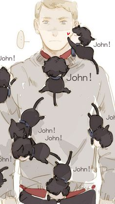 johnlock cat!lock