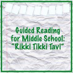 8 best riki tiki tavi images on pinterest english language middle rikki tikki tavi guided reading questions fandeluxe Image collections